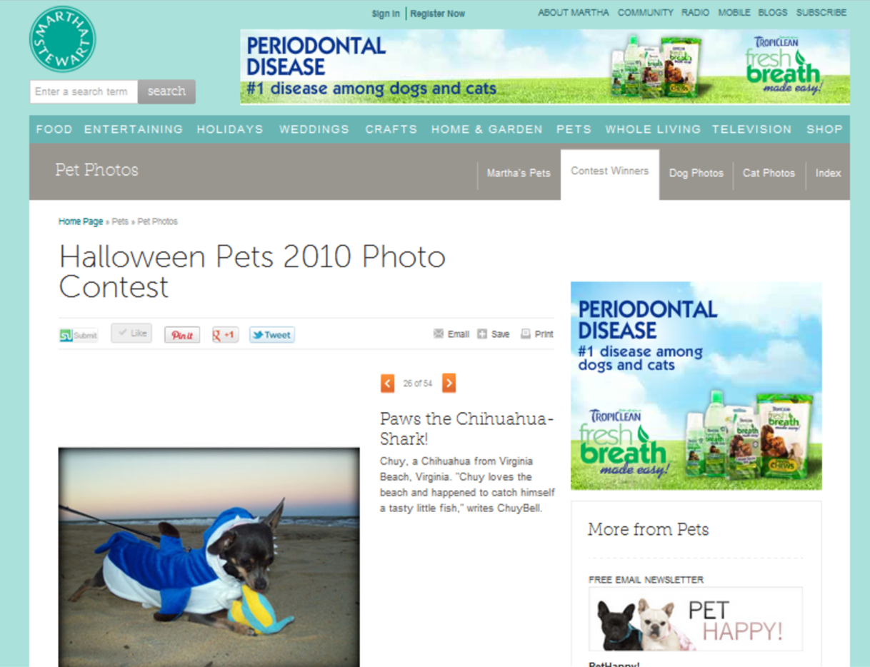 Martha Stewart Pets - 2010 Halloween Contest
